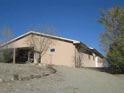 Rio Arriba County Single Family Home For Sale: 295 County Road 0001