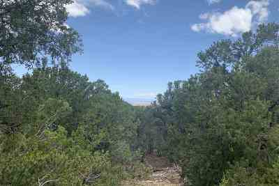 Santa Fe Residential Lots & Land For Sale: 2401 Camino Del Oso