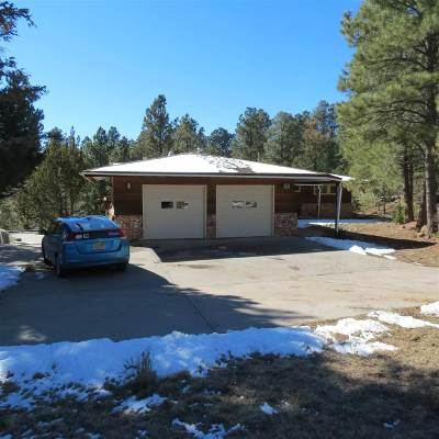 Los Alamos Single Family Home For Sale: 217 Barranca Road