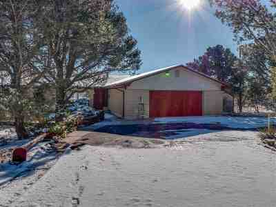 Los Alamos Single Family Home For Sale: 109 Monte Rey Dr N