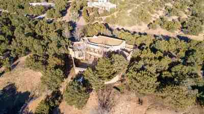 Santa Fe Single Family Home For Sale: 869 Paseo Del Sur