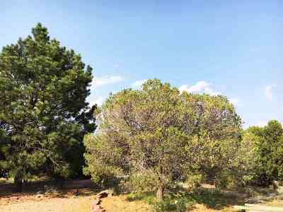 Residential Lots & Land Sold: 2105 Fort Union