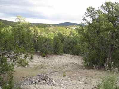 Residential Lots & Land For Sale: Tract 3 & 4 Camino Rincon