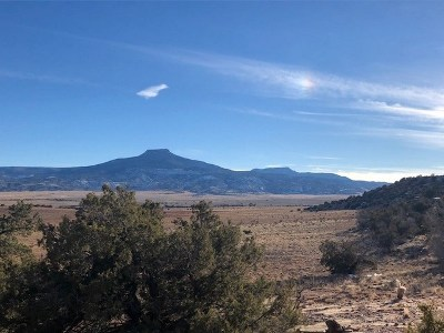 Residential Lots & Land For Sale: Lot 2-A High Mesas Of Abiquiu