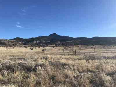 Residential Lots & Land For Sale: Lot 7 Nm State Road 96