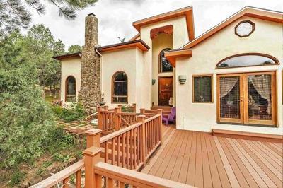 Single Family Home For Sale: 25 Bridge Street
