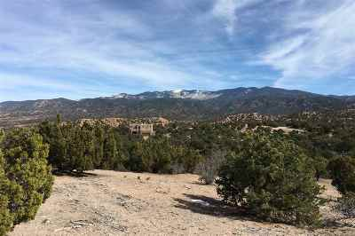 Residential Lots & Land For Sale: 113 Valle Sereno, Lot 203