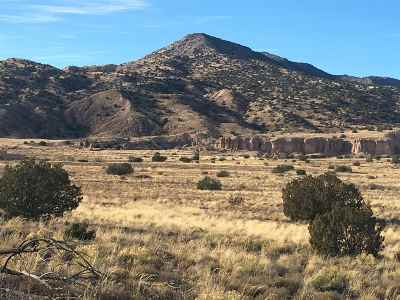 Residential Lots & Land For Sale: Hwy 554 Carson Forest Retreat