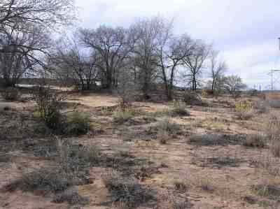 Residential Lots & Land For Sale: 1618-C Us Hwy 84