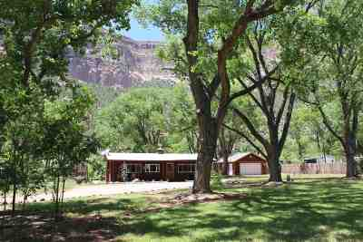 Single Family Home For Sale: 15787 Highway 4