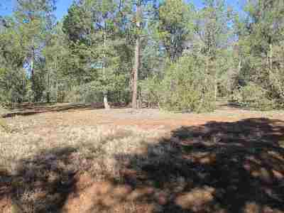 Residential Lots & Land For Sale: Tract 4-2 Jose Gonzales