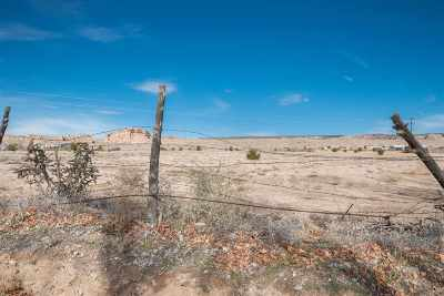 Residential Lots & Land For Sale: 133-B County Road 87