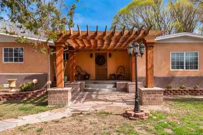 Rio Arriba County Single Family Home For Sale: 180 Lower San Pedro