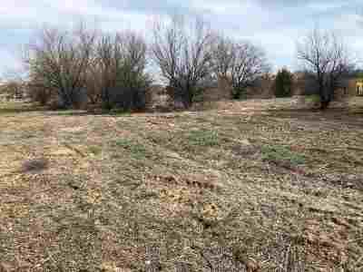 Residential Lots & Land For Sale: 133 County Rd 119