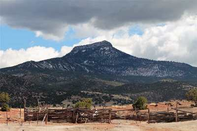 Residential Lots & Land For Sale: Off Nm 96 247.7 Acres