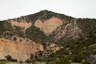 Residential Lots & Land For Sale: Off Nm 96 455.4 Acres