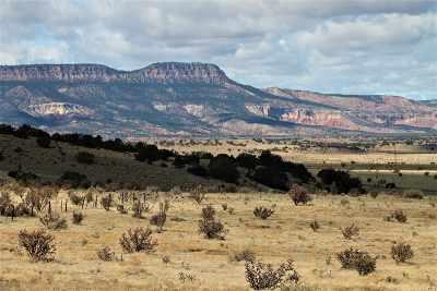 Abiquiu Farm & Ranch For Sale: Off Nm 96 247.7 Acres