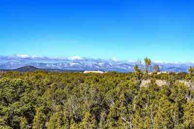 Residential Lots & Land For Sale: 4 Shaman - Lot 737