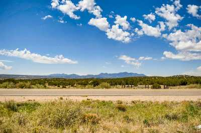 Residential Lots & Land For Sale: 691 Caminos Los Abuelos