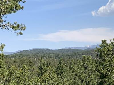 Residential Lots & Land For Sale: 155 Pinon Ridge Rd