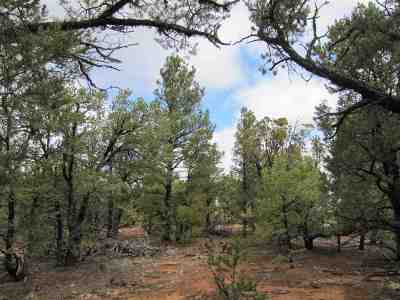 Residential Lots & Land For Sale: 64 The Cliffs View