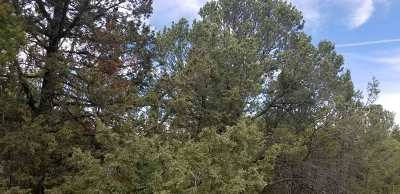 Residential Lots & Land For Sale: 21 Cedar Hill Drive