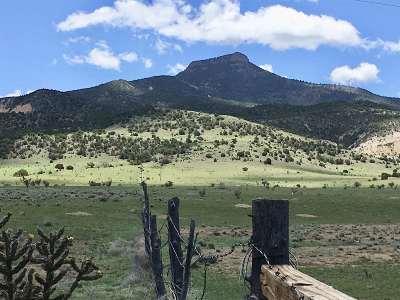 Abiquiu Farm & Ranch For Sale: Off Nm 96 455.4 Acres