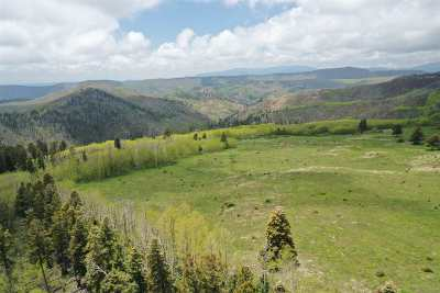 Residential Lots & Land For Sale: Forest Road 92 #Lots A,