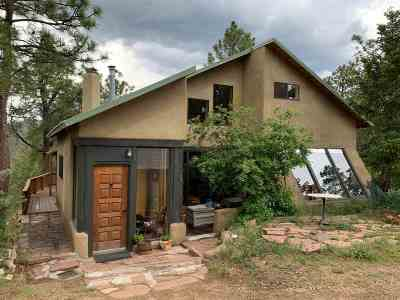Santa Fe County Single Family Home For Sale: 168 Overlook Rd
