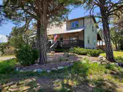 Rio Arriba County Single Family Home For Sale: 120 Elk Drive