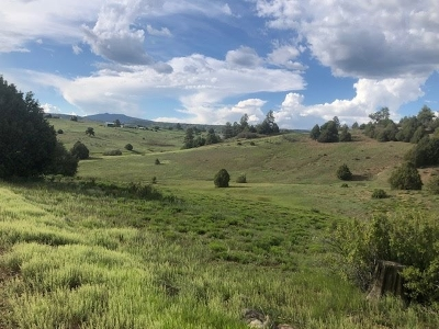 Residential Lots & Land For Sale: Elk Drive Chama West