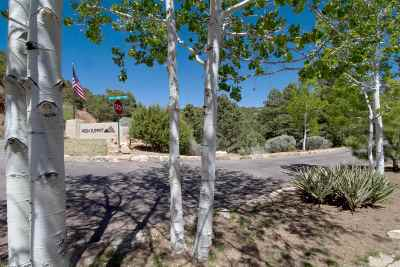 Residential Lots & Land For Sale: 1084 S Summit Ridge Lot 1