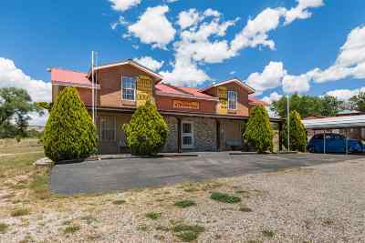 Rio Arriba County Single Family Home For Sale: 672 State Road 76