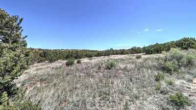 Residential Lots & Land For Sale: 31 Star Dancer Trail