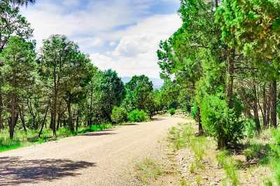 Residential Lots & Land For Sale: 17 Wild Wings Circle