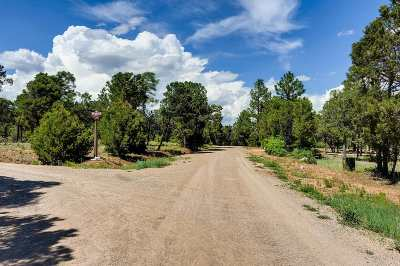 Residential Lots & Land For Sale: 47 Silver Feather Tr
