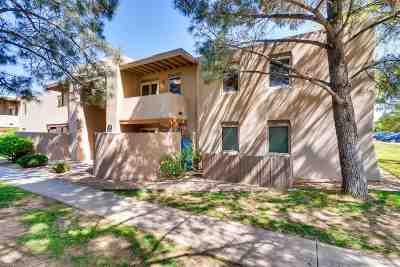 Santa Fe NM Condo/Townhouse For Sale: $203,500