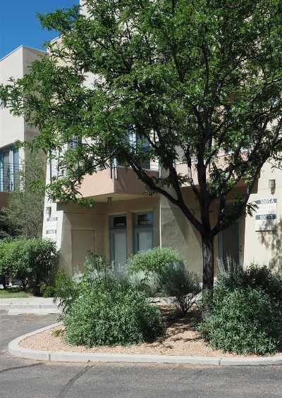 Santa Fe Condo/Townhouse For Sale: 3600 Cerrillos Unit 1003 A&b