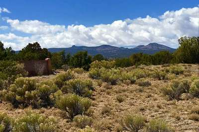 Residential Lots & Land For Sale: 133 Paseo Aragon, Lot 58