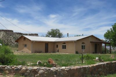 Abiquiu Single Family Home For Sale: 216 County Road 193
