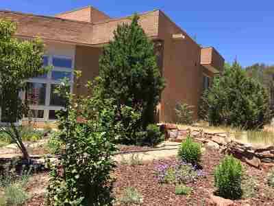 Santa Fe Single Family Home For Sale: 433 Luisa Lane