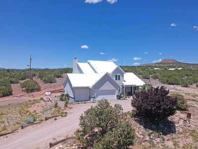 Single Family Home For Sale: 49 Skyline View Rd