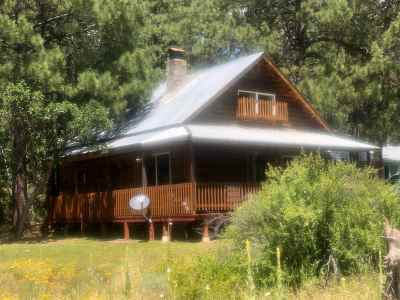 Chama Single Family Home For Sale: 687 State Road 512