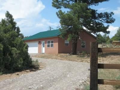Rio Arriba County Single Family Home For Sale: 256 Shroyer Drive