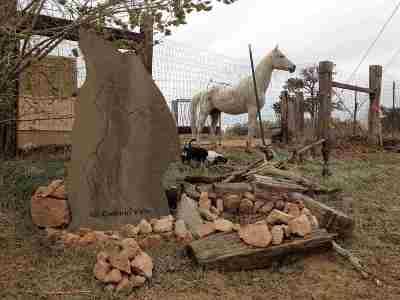 Santa Fe Single Family Home For Sale: 48 Camino Valle