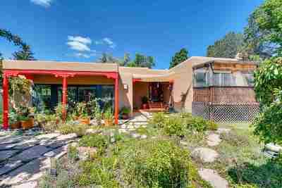 Santa Fe Single Family Home For Sale: 1419 Miracerros Loop S