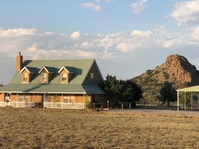 Santa Fe Single Family Home For Sale: 39 Rancho Alegre Road