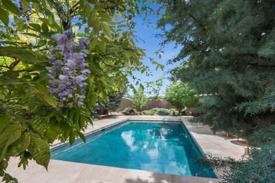Santa Fe Single Family Home For Sale: 797 Camino Del Monte Sol