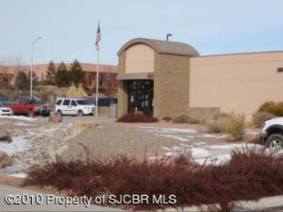 San Juan County Commercial For Sale: 4650 Butler Avenue