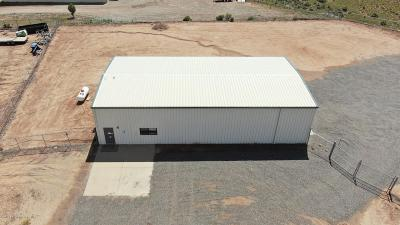 Aztec Commercial For Sale: 33 Road 2300